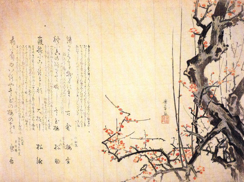 Изучение японского Восточный институт Питер