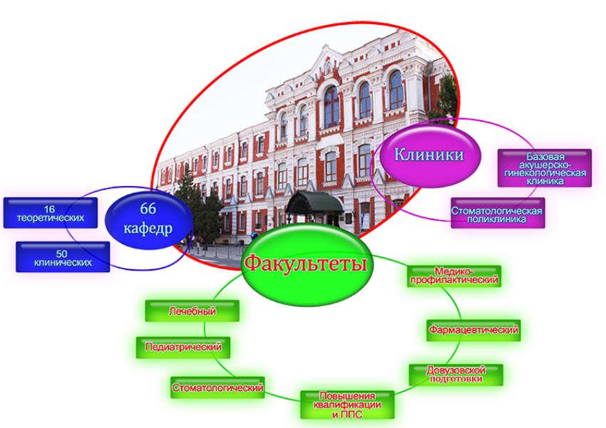 Структура университета КубГМУ