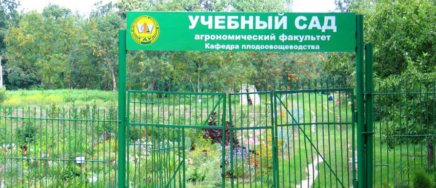 Агрономический факультет