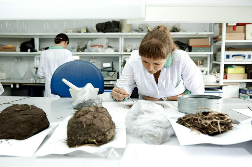 Факультет СФУ - Институт экологии и географии