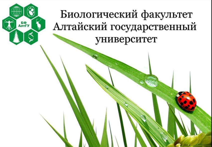 Биологический факультет в АлтГУ