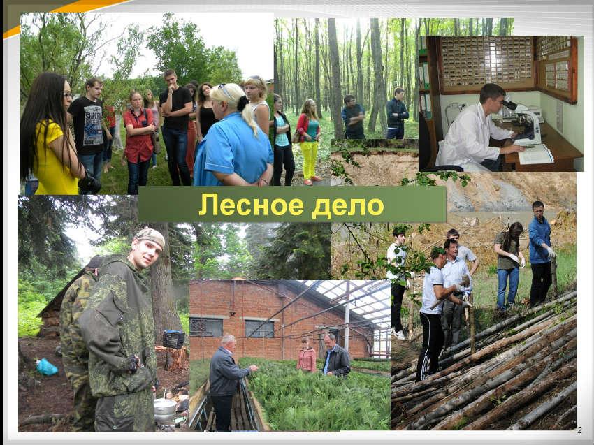 Экологический факультет в МГТУ г. Майкоп