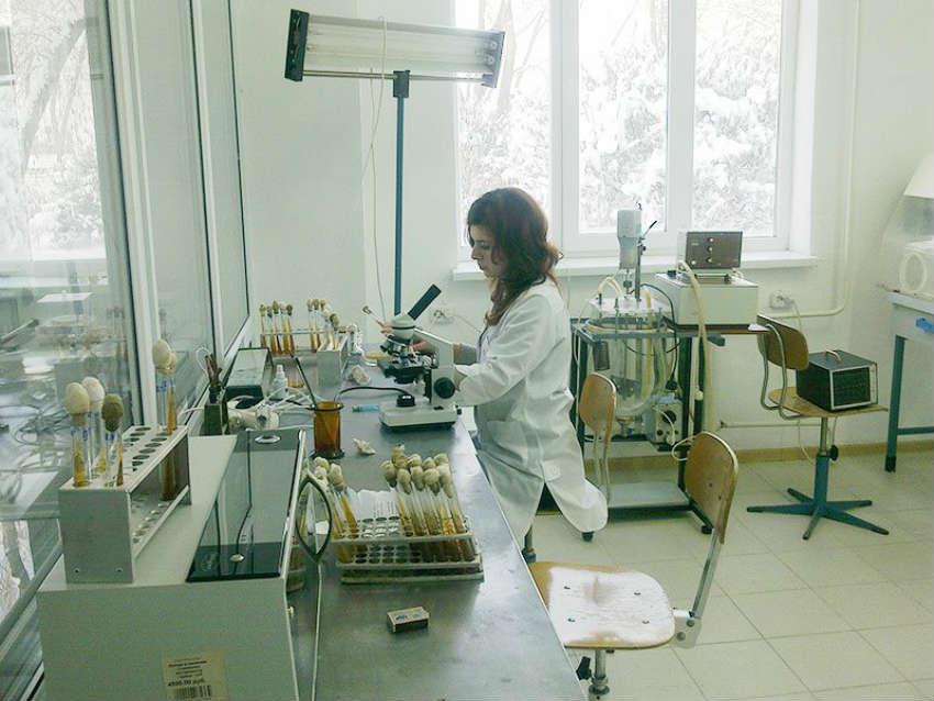 ГГАУ - факультет биотехнологии и стандартизации